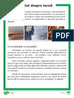 Nivel elementar.pdf