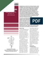 anaplasmosis.pdf