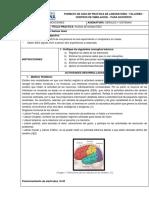SEÑALES EEG.pdf