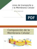 Presentación Membrana Celular