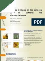 Puntos Críticos en La Cadena de Abastecimiento (1)