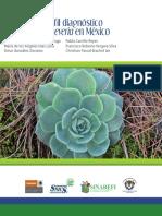Echeveria.pdf