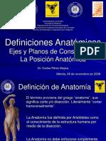 Anatomia Posiciones