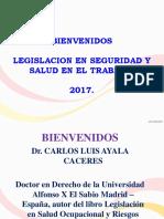 Carlos Ayala 2017, Presentacion Seguridad y Salud en El Trabajo