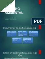 PPT SEIA (1).pptx