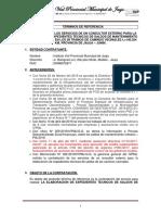 13. TDR - Servicio de Elaboracion de 8 Exp. de Saldos PIA 2019