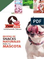 Recetario de Snacks Naturales