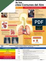 EPA Poster Spanish 2008