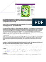 Diagram of plant cell.docx