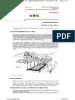 HOJA DE INFORMACION FAO 2