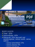 Biofisika Neuron 2013