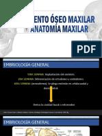 CRECIMIENTO OSEO BLACK.pptx