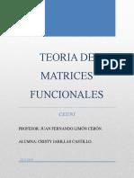Teoria Matrices Funcionales