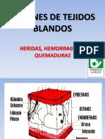 Lesiones de Tejidos Blandos2018-2