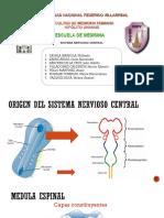 Sistema Nervioso UNFV