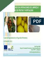 Recomendaciones limpieza y lavado frutas y hortalizas (1).pdf