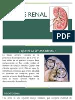 LITIASIS RENAL.pptx
