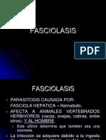Fasciolasis
