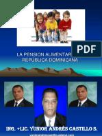 Pension Alimentaria Republica Dominicana