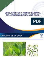 Charla de hoja de coca_Final.pptx