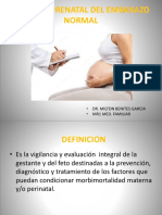 Control Prenatal Del Embarazo Normal