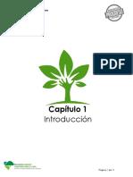 4. EIA_Cap01_Introducción