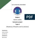 Document (4).docx