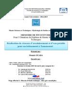 Realisation de reseaux d'assai - OUABA Mounir_2959.pdf