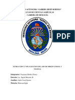 UNIVERSIDAD AUTÓNOMA 2.docx