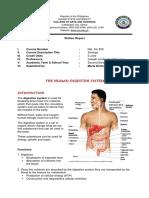 Digestive System - Santiago.docx