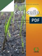 cenicana_2009
