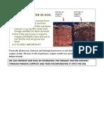 Practical IGCSE Soils Organic Matter