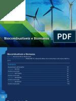 BIOCOMBUSTIVEIS AULA COMPLETA.pdf