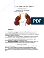 Endocrinologie - c8 Glandele suprarenale