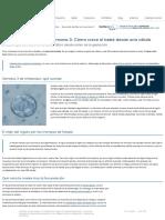 Desarrollo del feto en la semana 03_ Cómo crece el bebé desde una.pdf