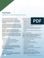AA Indonesia Country Profile.pdf