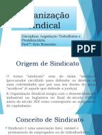 AULA 5. Organização Sindical.pptx