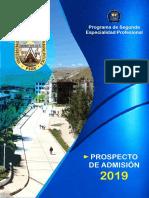 PROSPECTO DE ADMISIÓN 2019.pdf