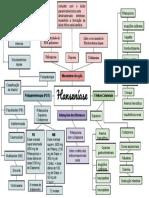 Mapa mental - Hanseníase