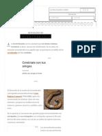 Definición de Invertebrados - Qué Es, Significado y Concepto