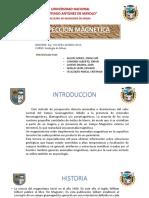Prospeccion Magnetica Diapos Final