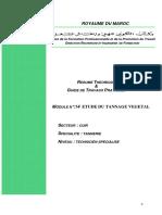 m14 - Etude Du Tannage Vegetal Cuir-tan