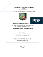 Cornejo Badillo Victor Raul
