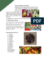 Gastronomía Maya en Guatemala