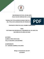 Factores Que Inciden en La Neumonía de Los Adultos Mayores de 65 Años de Edad Almeida Vera - Valla Caguana