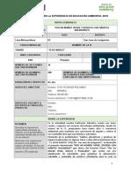 Ficha Resumen de La Experiencia en Educación Ambiental PRIMARIA I.E. 10 de MARZO