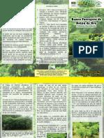 banco_forrajero_boton_oro.pdf