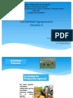 contabilidad agropecuaria diapositiva