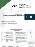 Mapa Conceptual Del Desarrollo Cognitivo en La Madurez