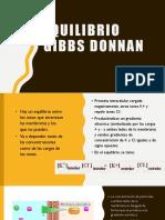 Equilibrio Gibbs Donnan.pptx